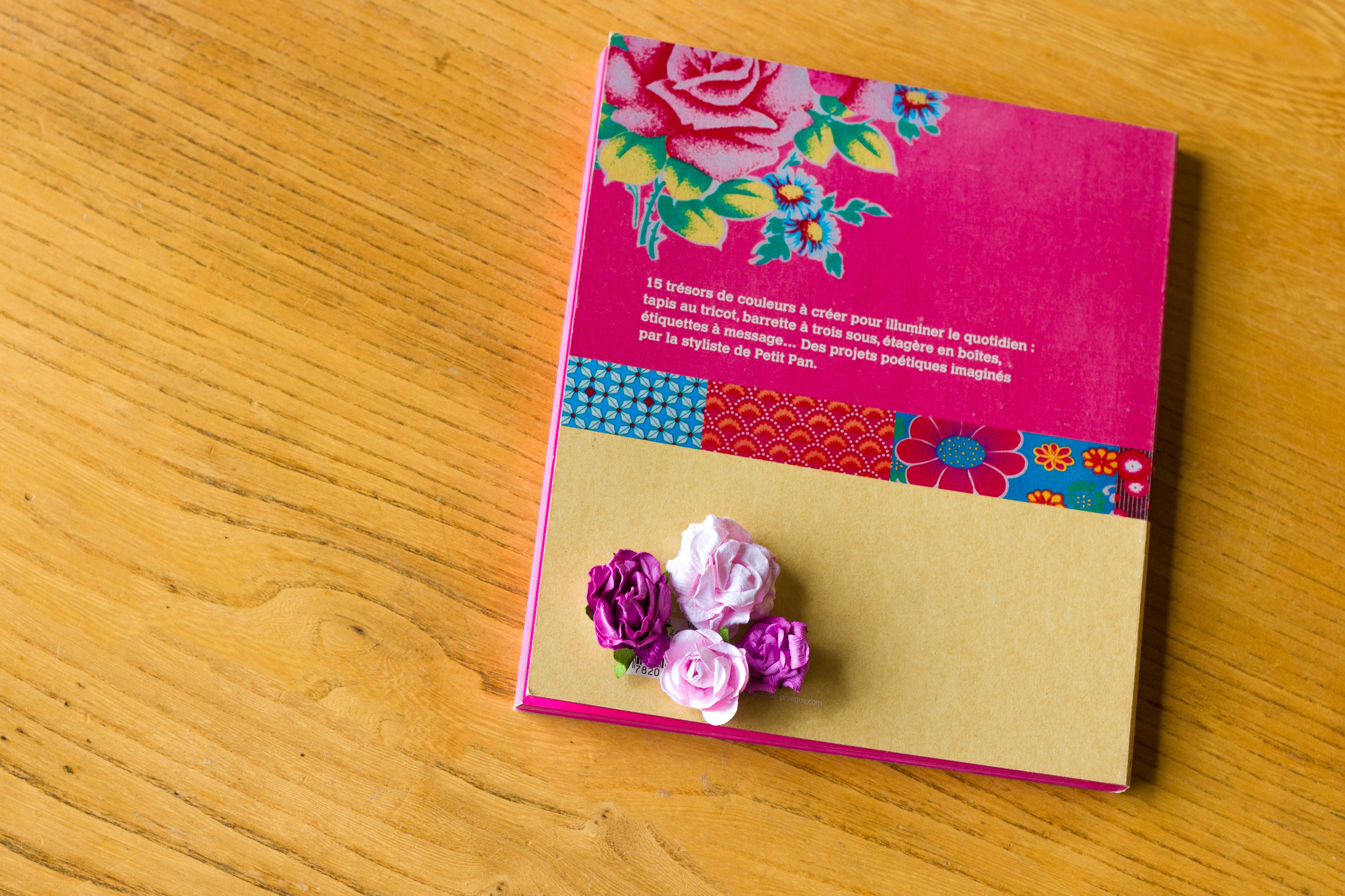 Petit Pan : Vivre en multicolore le livre